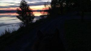 Magiskt nere vid sjön vid solnedgång
