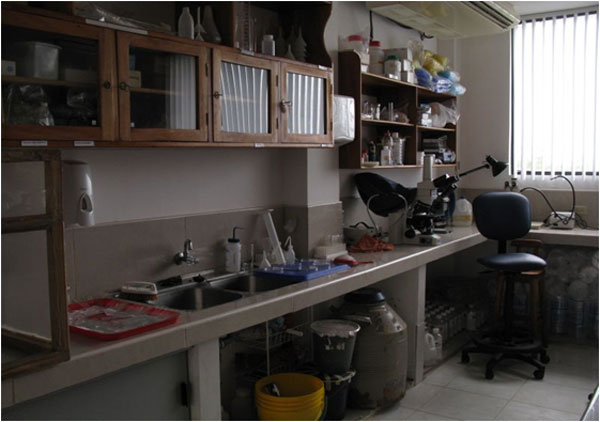 The laboratory where the histopathological equipment is being set up. Photo:Beate Hillmann, SLU.