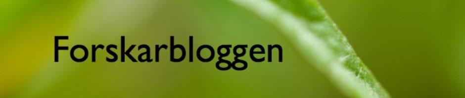 forskarbloggen