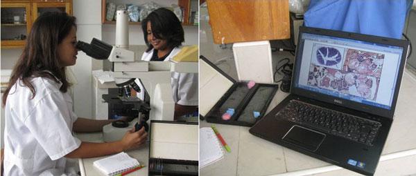 Isabel Haro och Jenifer Jenifer Suarez arbetar i labbet.