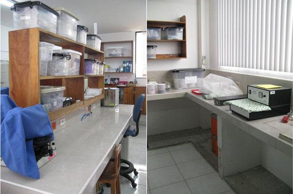 Nu är laboratoriet i ordning!