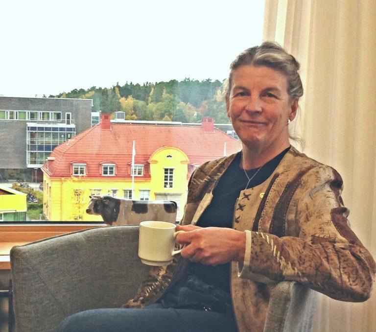 Karin Holmgren, Prorektor vid SLU